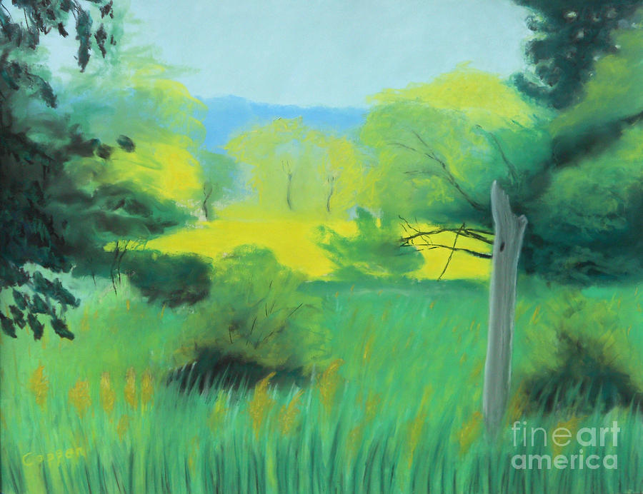 Pastel Landscape Pastel - Cloud Shadow And Summer Sun by Robert Coppen