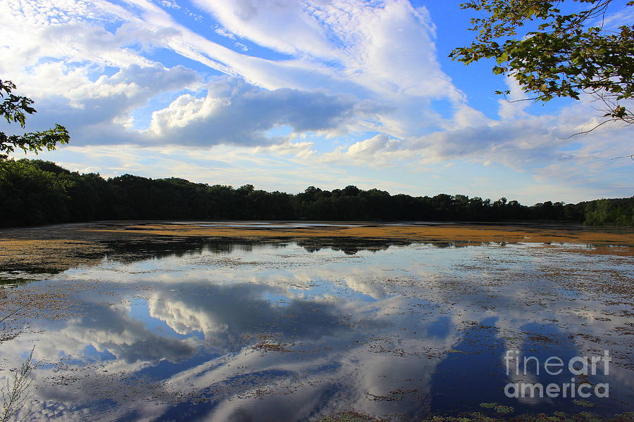 Cloud Show, Reflected Photograph by Hanni Stoklosa