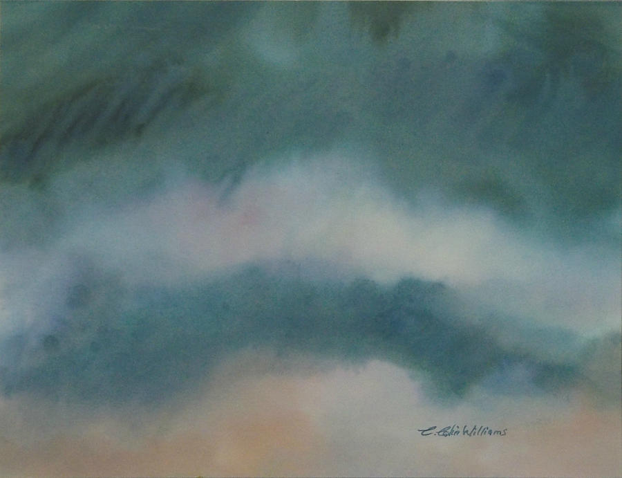Cloud Study 1 by E Colin Williams ARCA