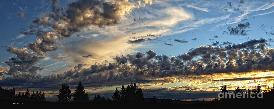 Clouds Photograph - Clouds Of Oregon by Shari Nees