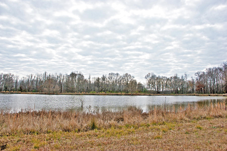Clouds over Pond by Gina O'Brien