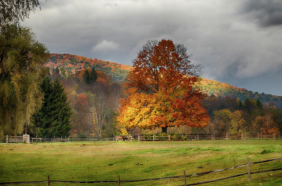 Vermont Fall Foliage Photograph - Clouds Part Over Marsh Billings-rockefeller Nhp by Jeff Folger