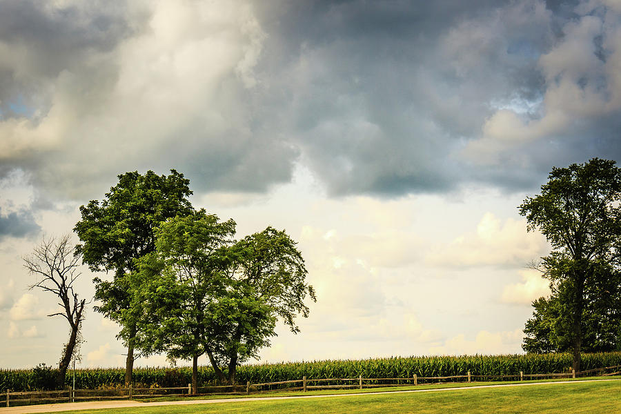 Cloudy Country Day by Joni Eskridge