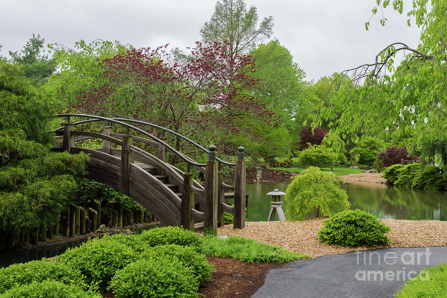 America Photograph - Cloudy Day Garden Stroll by Jennifer White