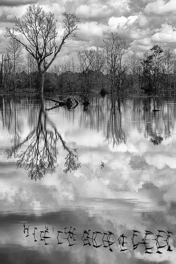 Clouds Photograph - Cloudy Reflection by Hitendra SINKAR