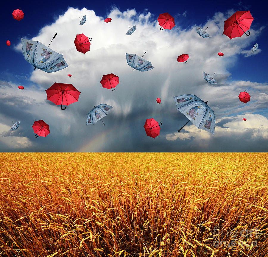 Field Photograph - Cloudy With A Chance Of Umbrellas by Bob Christopher