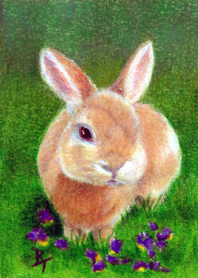 Rabbit Painting - Clover Aceo by Brenda Thour