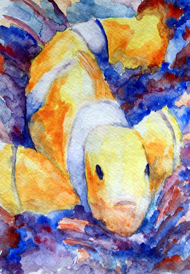 Fish Painting - Clown Fish by Mike Segura