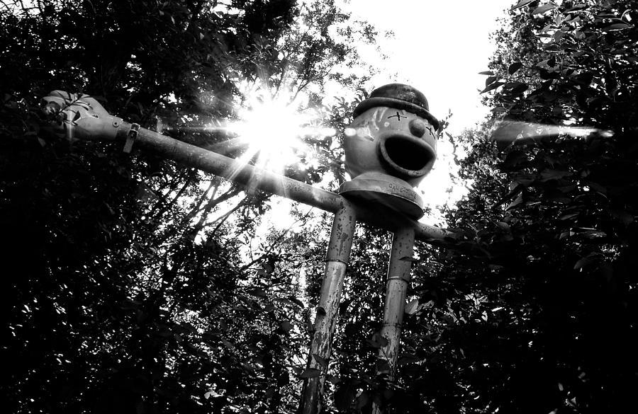 Clown Photograph - Clown by Tom Melo
