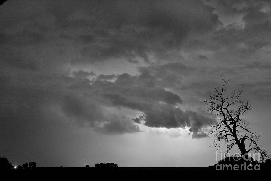 Tree Photograph - Co Cloud To Cloud Lightning Thunderstorm 27 Bw by James BO  Insogna
