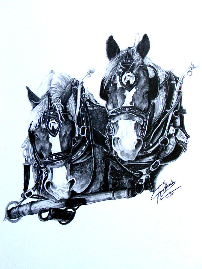 Pulling Drawing - Co Workers by Paper Horses Jacquelynn Adamek