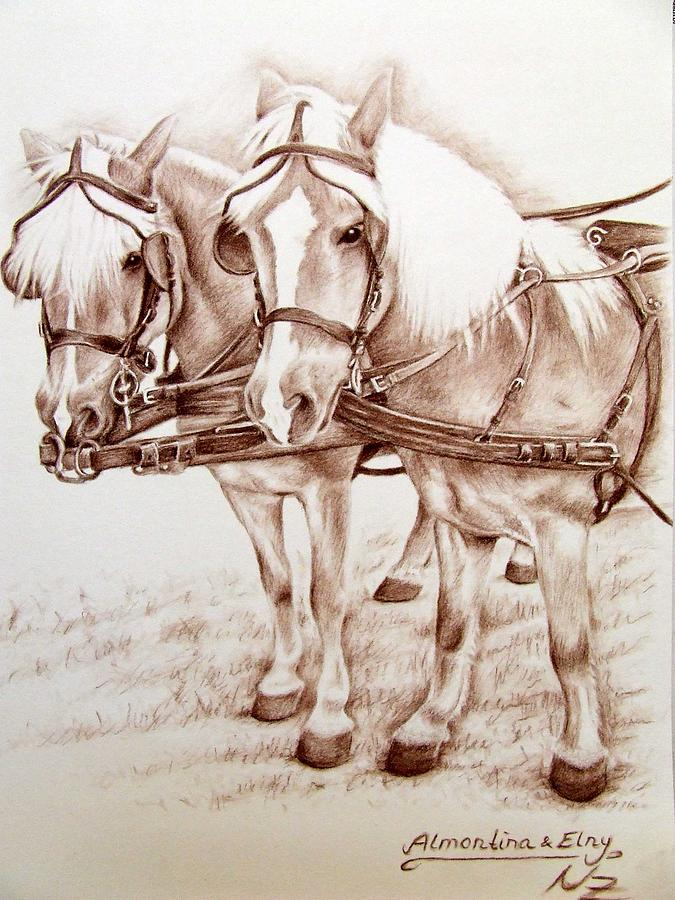 Horses Drawing - Coach Horses by Nicole Zeug