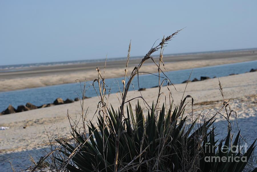 Seashore Photograph - Coastal Calm by Frank Larkin