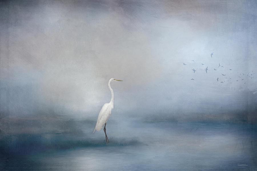 Coastal Egret Digital Art