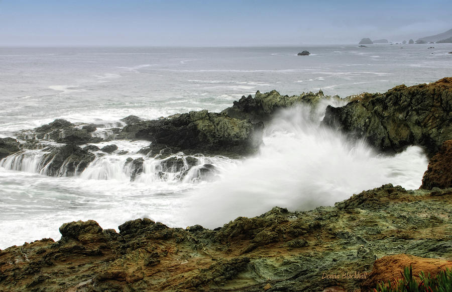 Coast Photograph - Coastal Expressions by Donna Blackhall