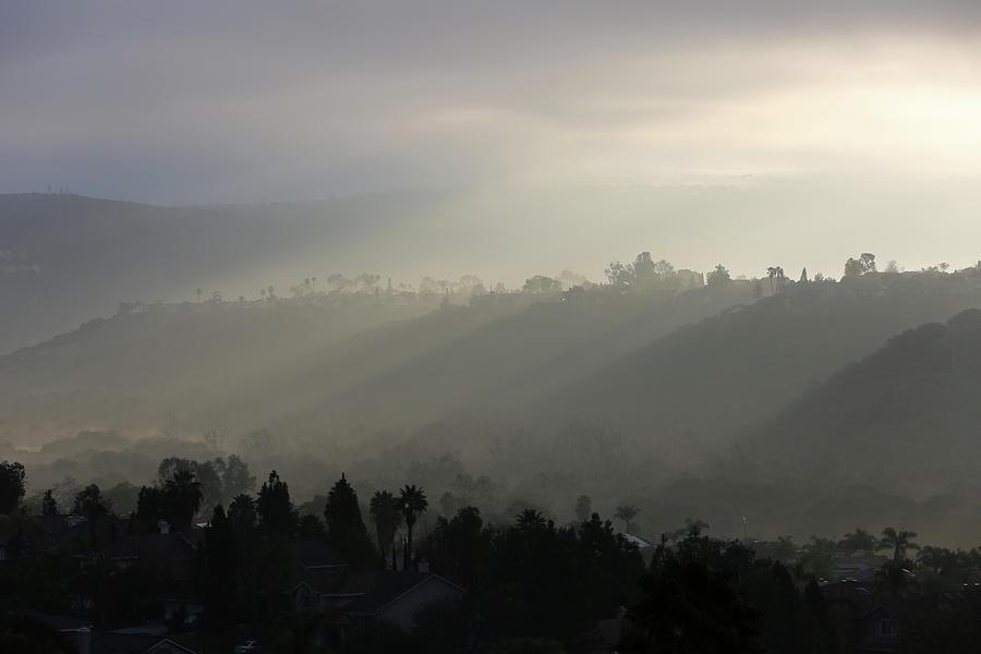 Fog Photograph - Coastal Fog  by Robin Street-Morris