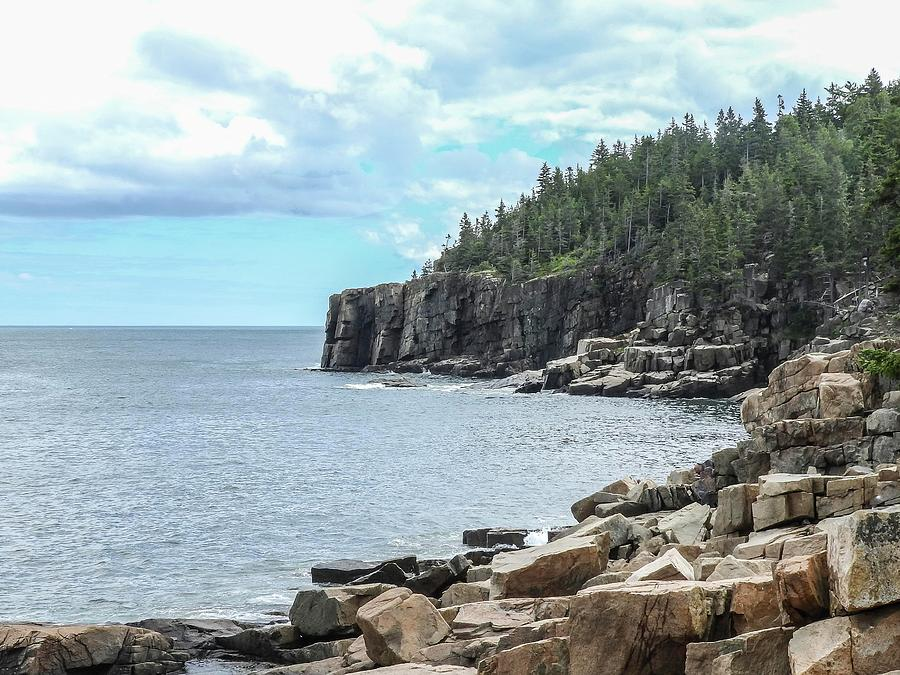 Coastal Landscape #2 from Ocean Path Trail, Acadia National Park by NaturesPix