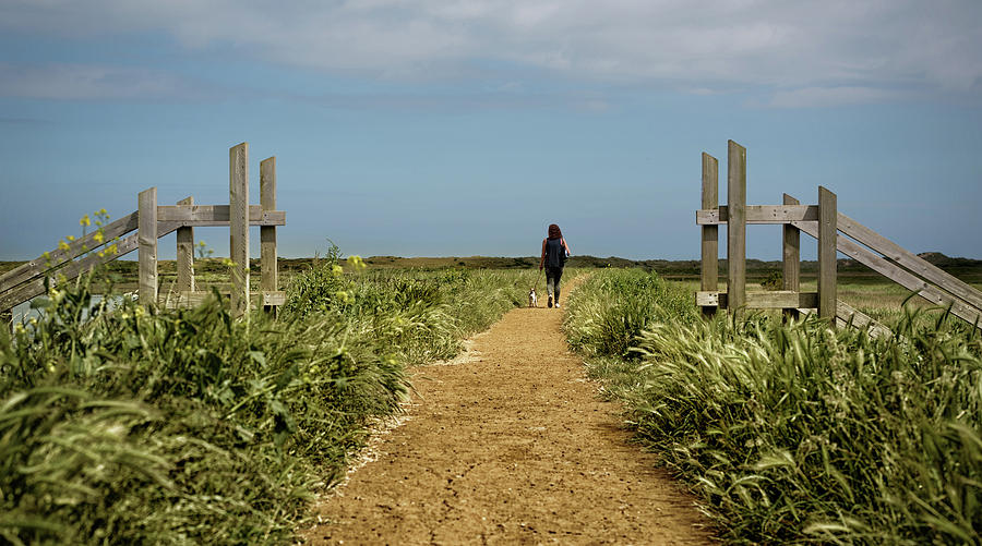 Norfolk Photograph - Coastal Path by Nick Bywater