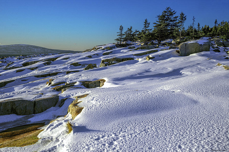 Coastal Snowscape At Schoodic Point by Marty Saccone