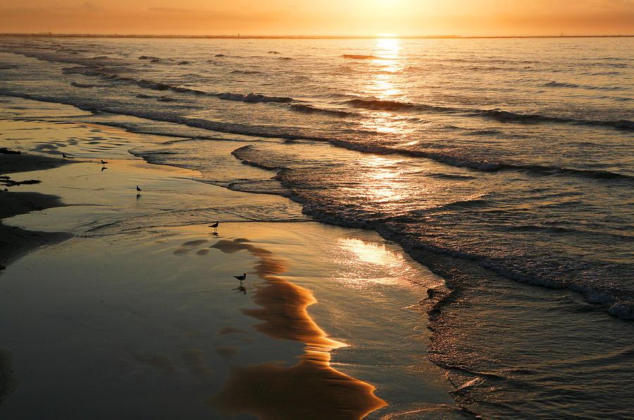 Beach Photograph - Coastal Sunrise by Marilyn Hunt