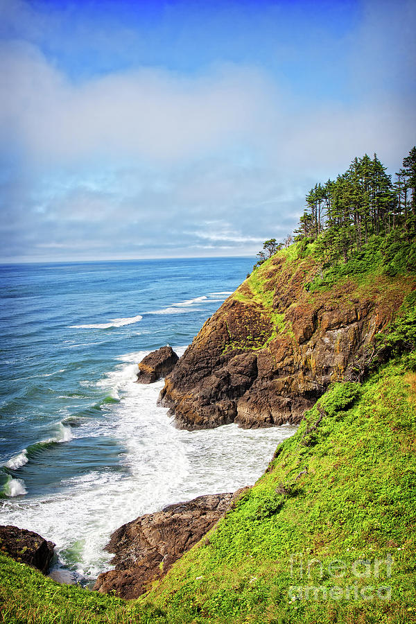 Coast Photograph - Coastal View From North Head by Lincoln Rogers