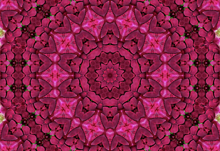 Cobbled Roses Digital Art