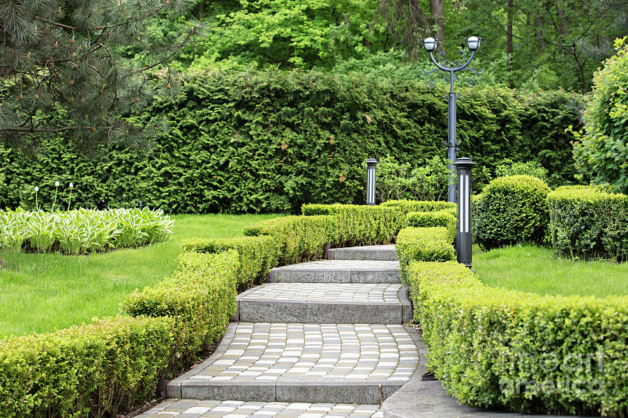 Cobbled Stepped Trail In A Beautiful Park Framed By Sheared Shrubs