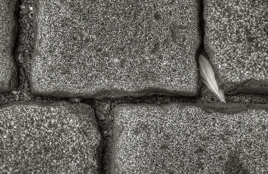 Cobblestone and Feather by Michael Kirk