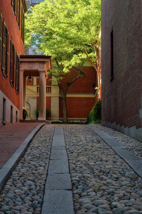 Cobblestone Drive by Michael Hubley