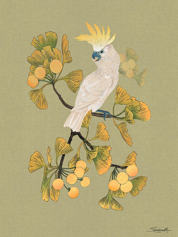 Parrot Digital Art - Cockatoo And Ginkgo Tree by M Spadecaller