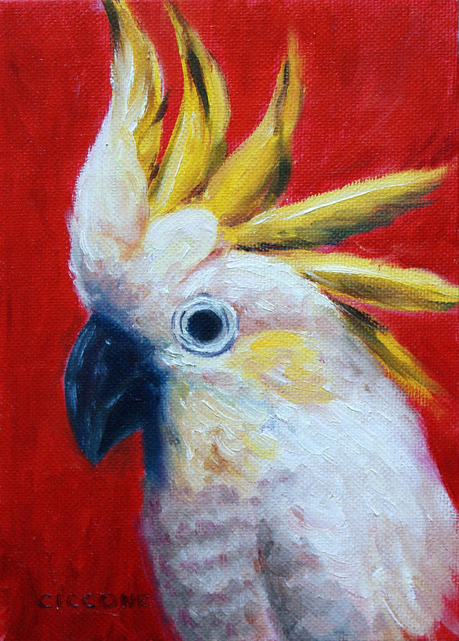 Cockatoo by Jill Ciccone Pike