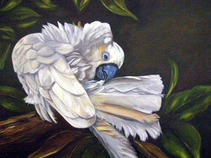 Birds Painting - Cockatoo Preening by Anne Kushnick