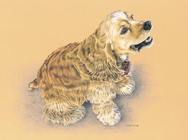 Nature Painting - Cocker Spaniel - Millie by Greg Smith