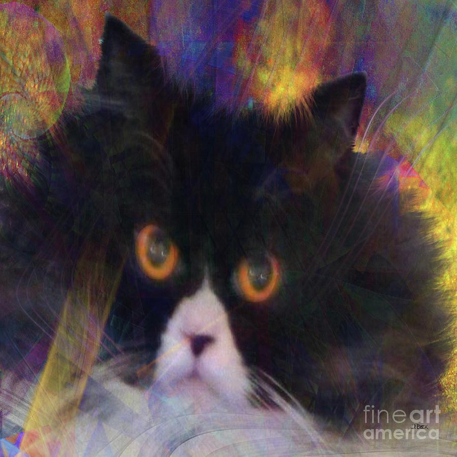 Cat Digital Art - Coco Au Vin - Square Version by John Robert Beck