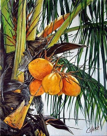 Coconuts Painting - Coconuts by Carlos Alvarez