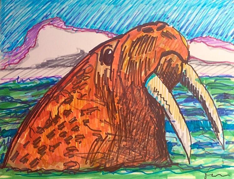 Walrus Drawing - Codys Critters - Waldo the Walrus by George Frayne