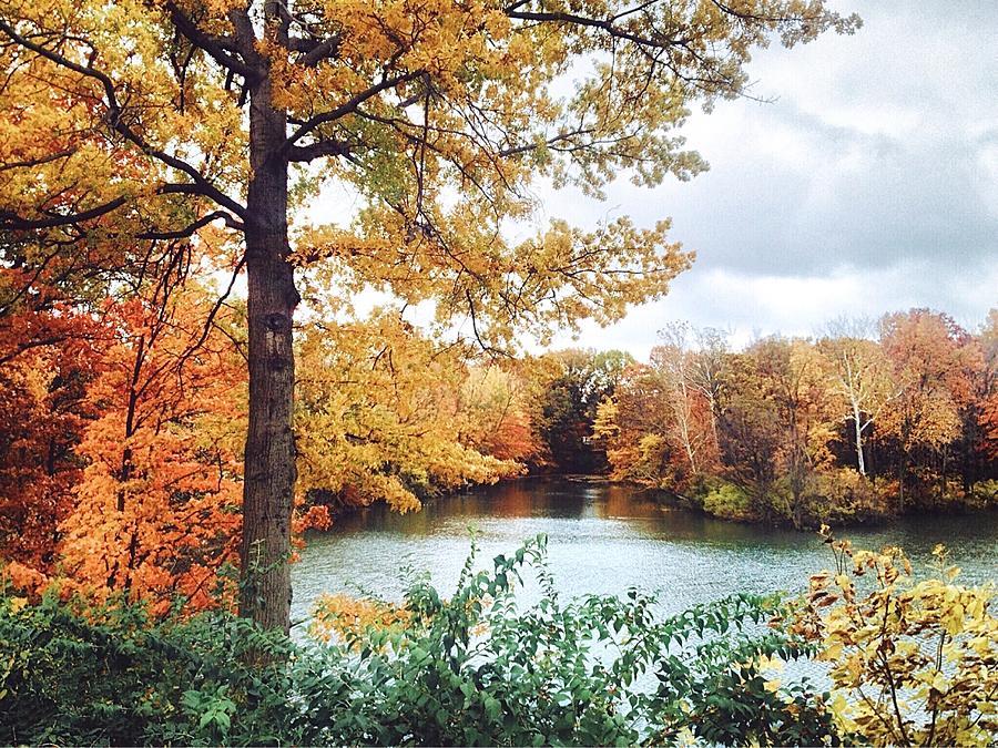 Autumn Photograph - Coe Lake Fall Series 1a by Mahalograph                                        Photography
