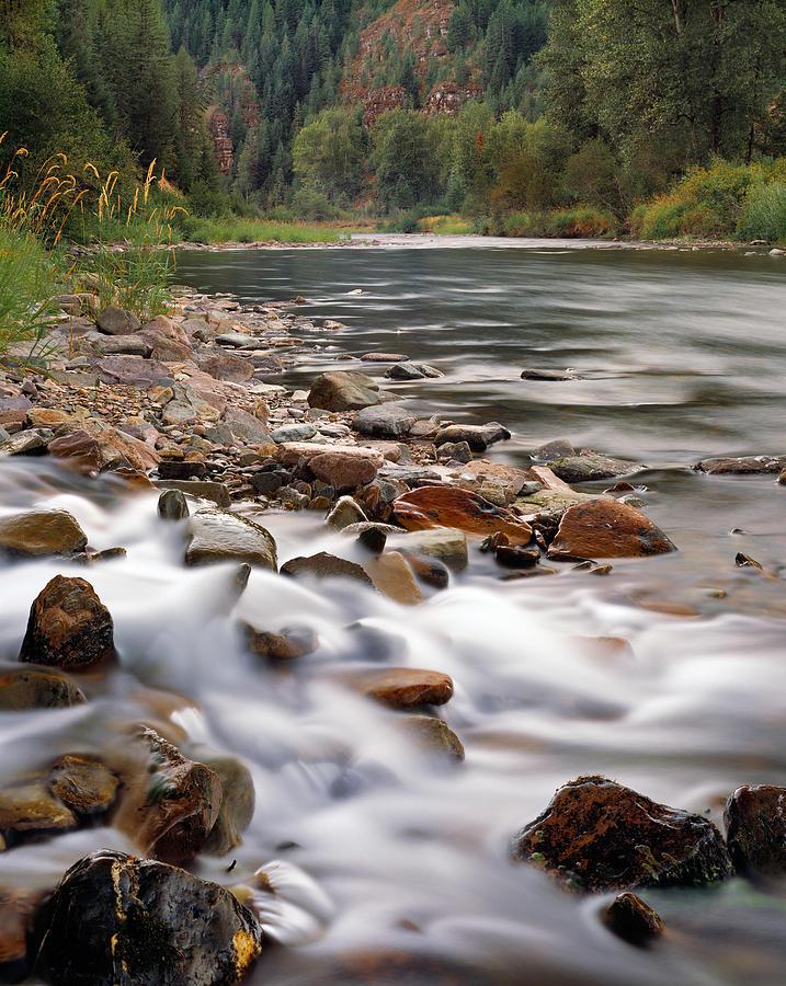 River Photograph - Coeur Dalene River by Leland D Howard