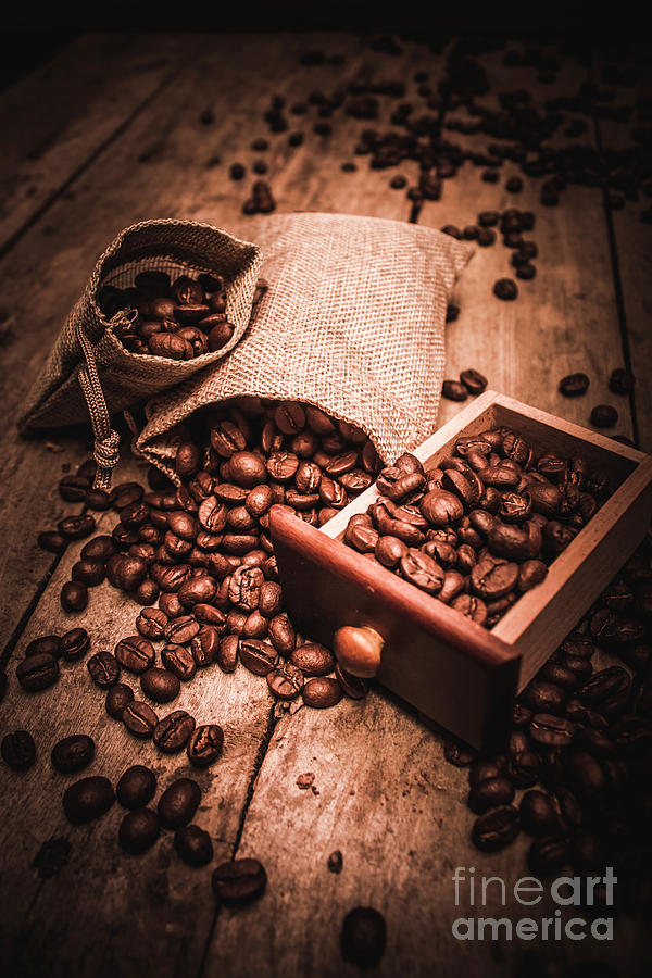Coffee Bean Art Photograph By Jorgo Photography Wall Art