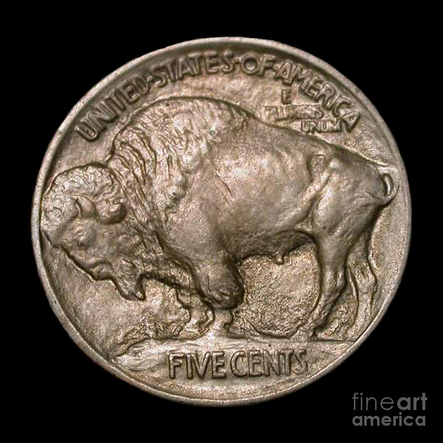 Currency Photograph - Coin Buffalo by Jost Houk