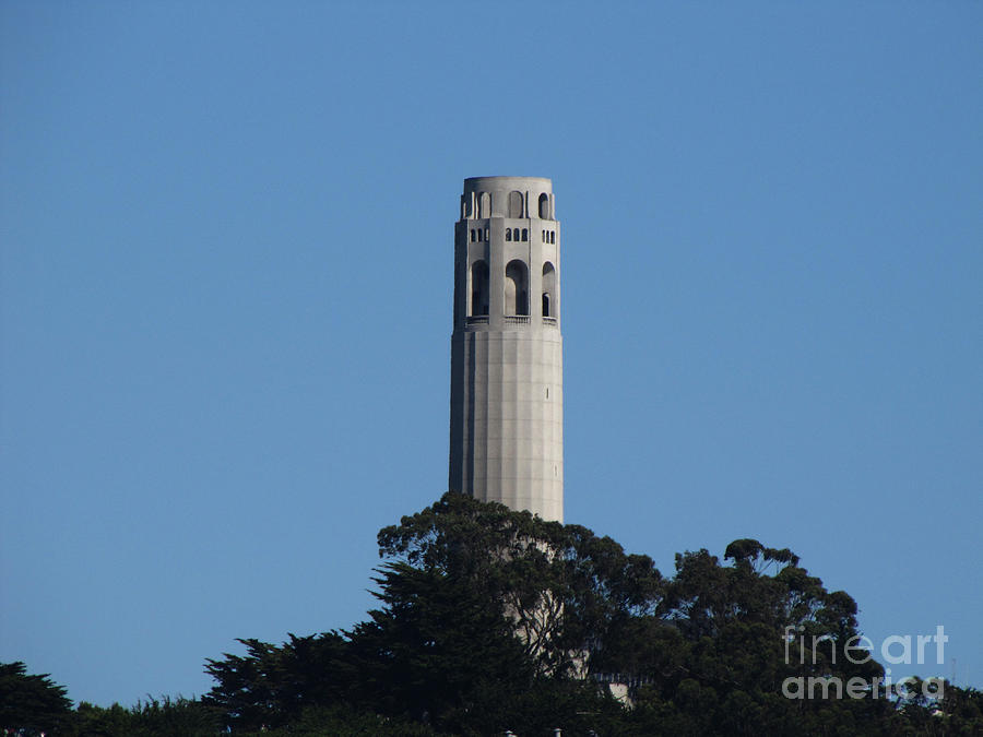 San Francisco Photograph - Coit Tower San Francisco by Serena Ballard