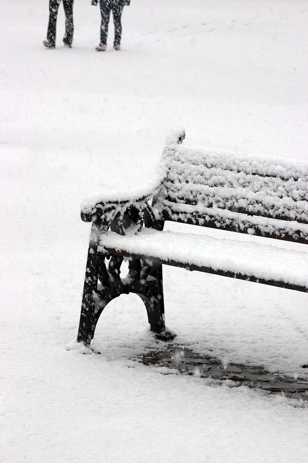 Photographer Photograph - Cold Bench 2 by Jez C Self