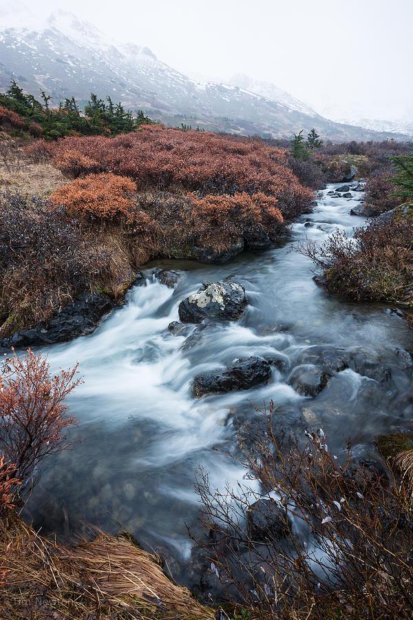 Alaska Photograph - Cold Creek in Autumn by Tim Newton