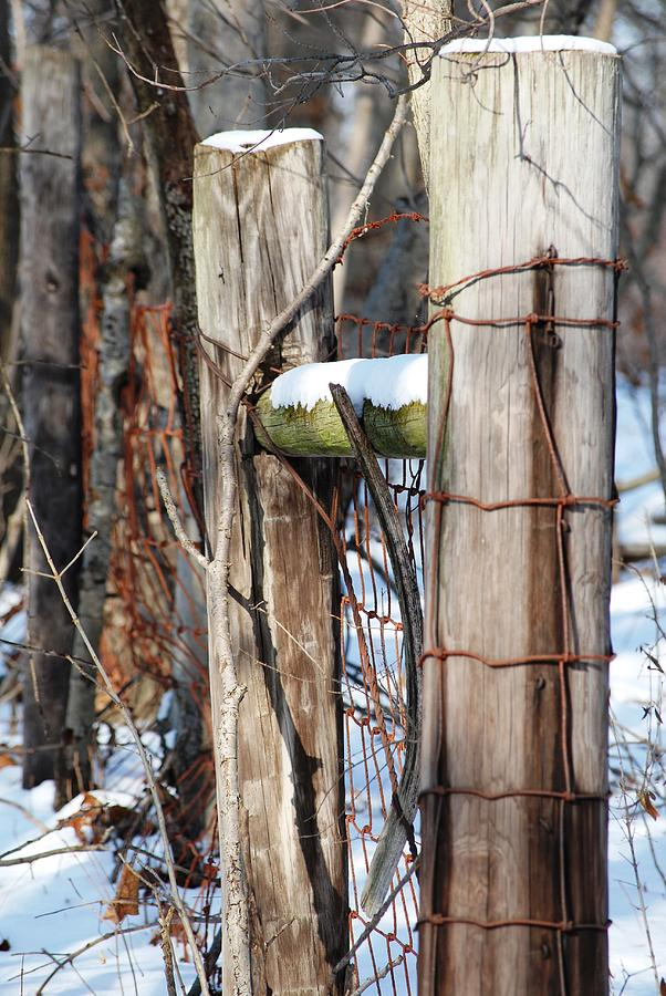 Fence Photograph - Cold Division by Peter  McIntosh