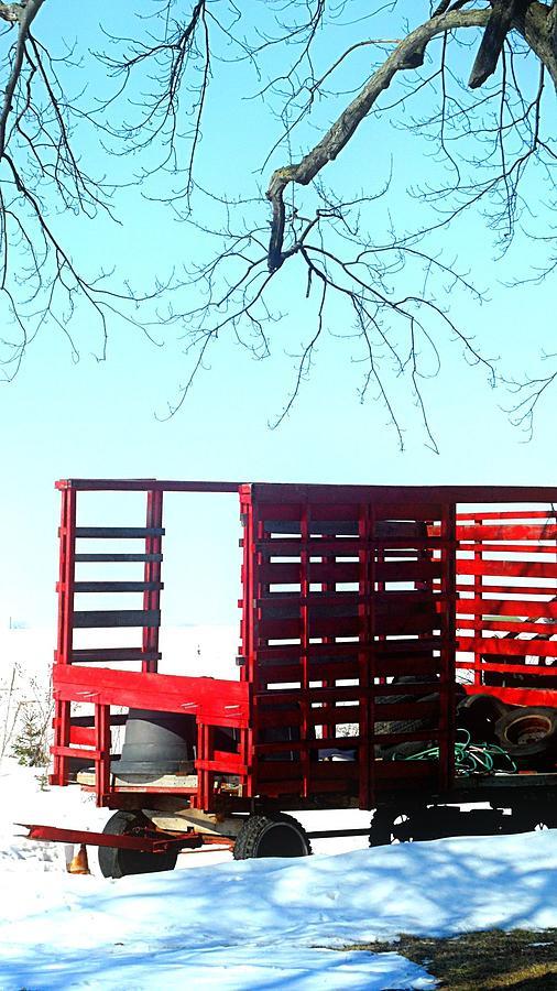 Alone Photograph - Cold Red Alone by Cyryn Fyrcyd