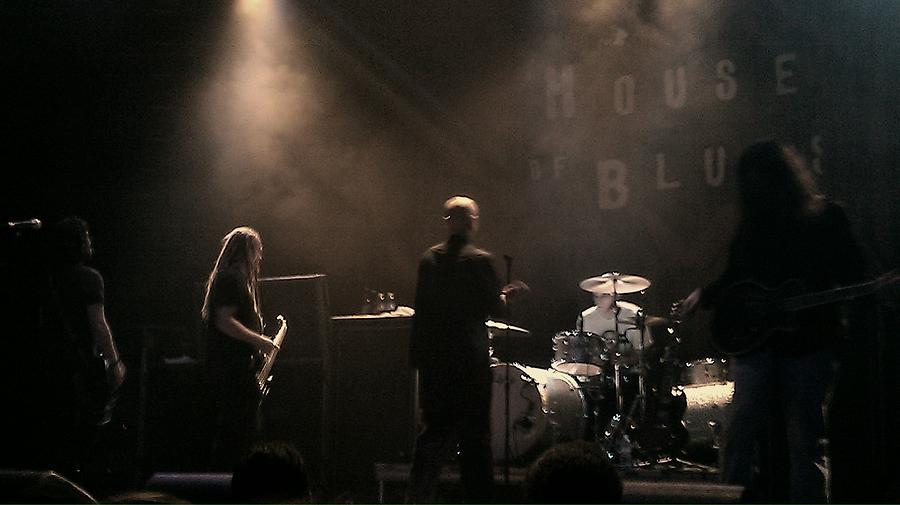 Band Photograph - Colds Back To The World by Stephanie Haertling