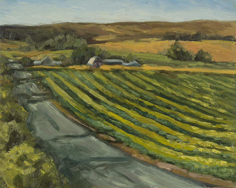 Cole Crop by Julie Rumsey