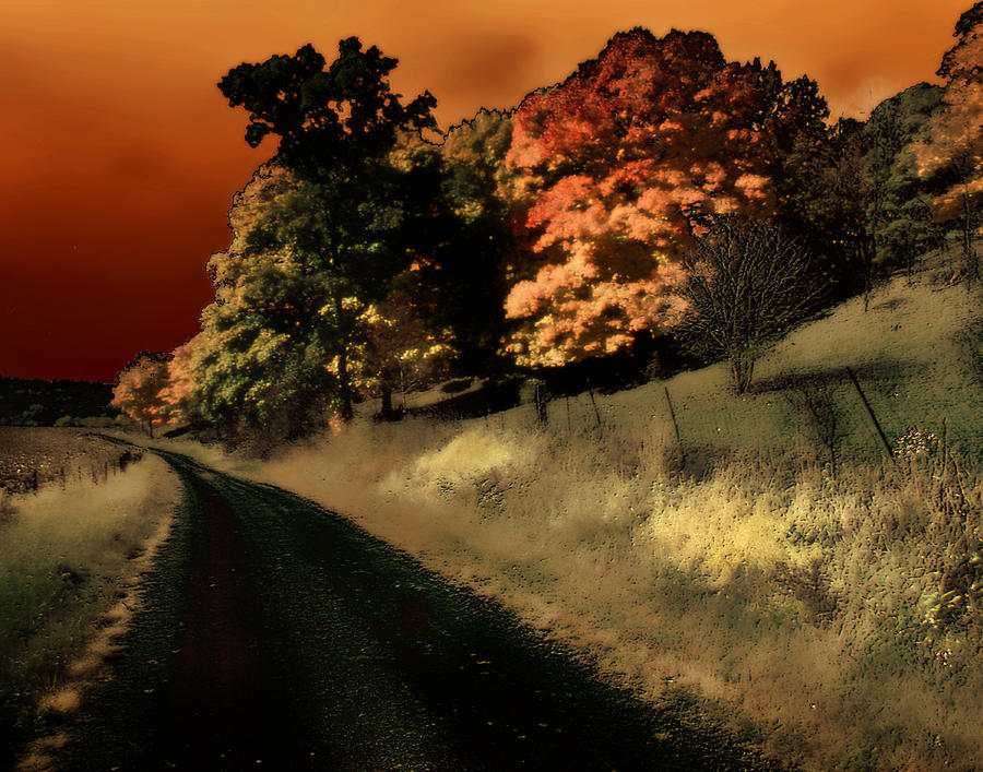 Road Photograph - Coles County by Jim Painter