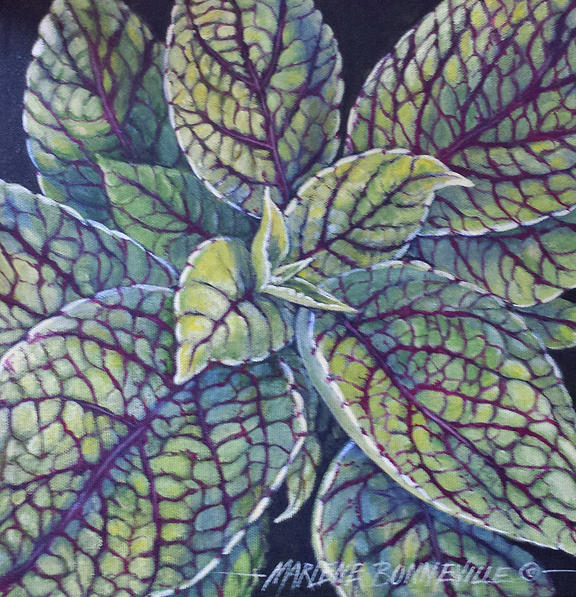 Coleus Painting - Coleus Leaves by Marlene Bonneville