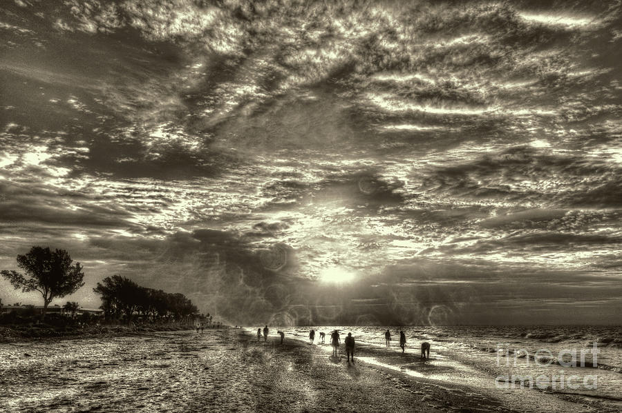 Collecting Seashells On Sanibel Island by Jeff Breiman